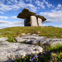 Mysteries of the Burren, Slainte Ireland Tours