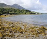 Explore Clew Bay,Slainte Ireland Tours