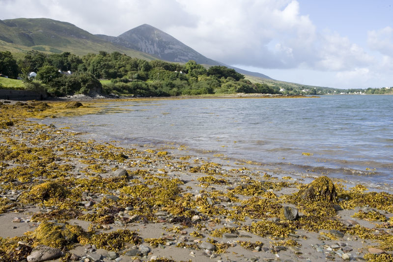 Explore Clew Bay,Slainte Ireland Tours